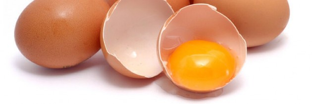 2 Eggs a Day Burns Fat
